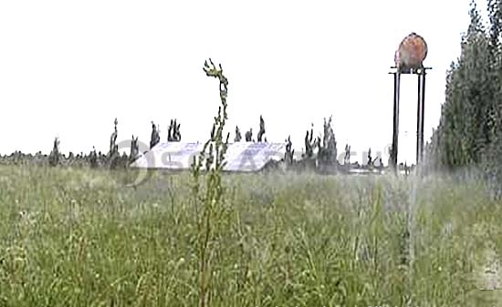 漠治理示范基地草木茂盛-全球光伏荒漠治理成功典范 牛玉琴治沙示