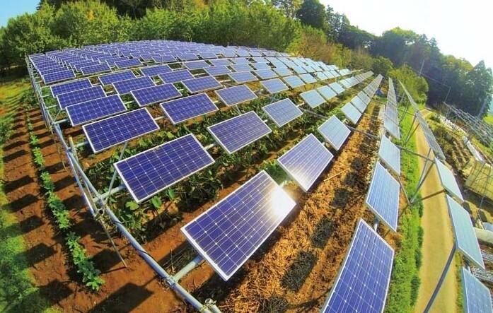 光伏农业大棚项目难点解读 -楠哥-界面- 太阳能发电网